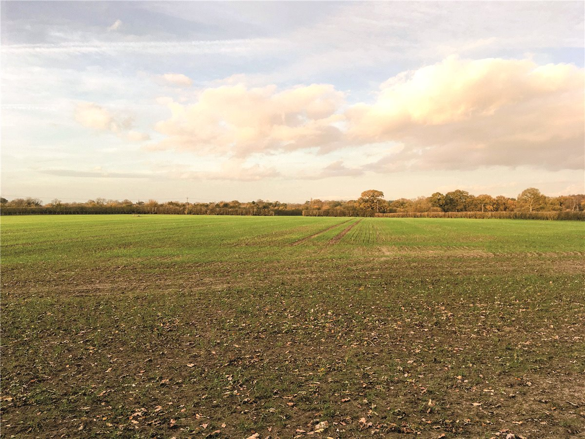 Land Commercial for sale in Forest Road, Greatham, Liss, Hants, GU33